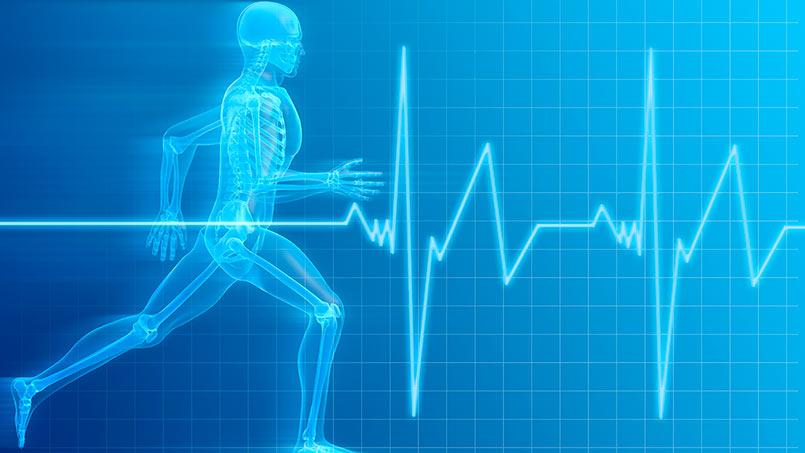 rutinas de entrenamiento para correr 10 km interna1 - isaf
