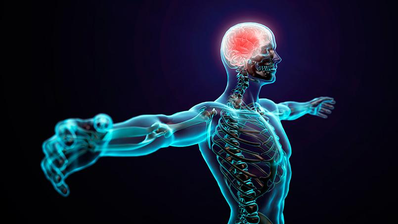 neuroentrenamiento - isaf